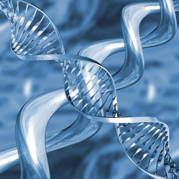 570x570-images-MB-2012-853-Молекула-ДНК-3 (570x570, 51Kb)