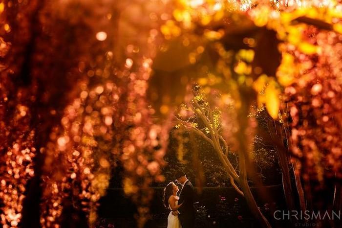 Лучшие свадебные фото от Ben Chrisman 32 (700x466, 85Kb)