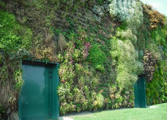 cамый большой вертикальный сад в мире6 (570x408, 259Kb)