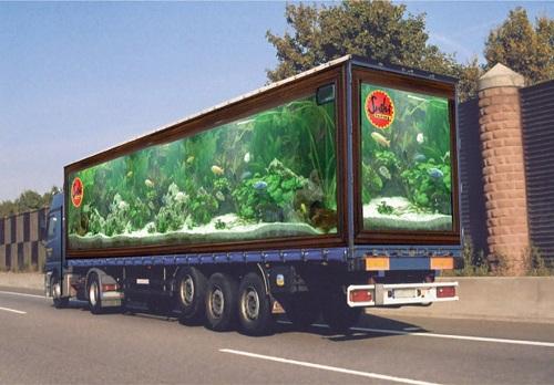 aquarium (500x348, 73Kb)