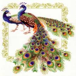 Stitch.kh.ua Вышивка крестом Наборы Риолис Счетный крест Звери и птицы - Набор для вышивания Риолис 0767 Павлин.