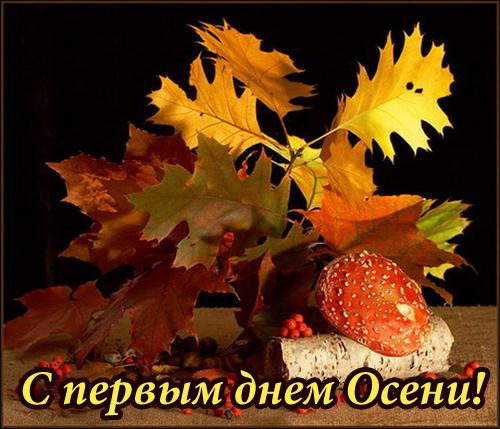 osen_02 (500x429, 135Kb)