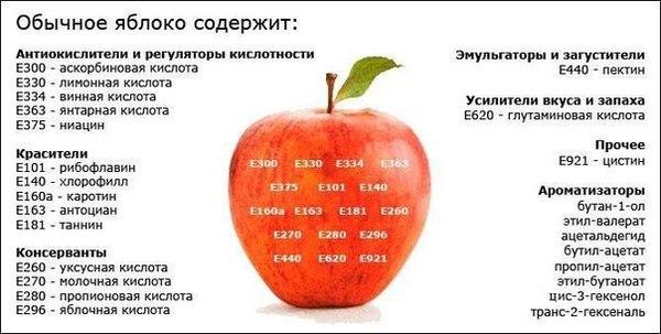 4524271_e5aee14cf4ed1012c43474ee52c88f51_b (600x303, 49Kb)