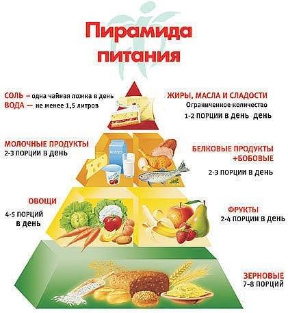 питание (421x457, 43Kb)