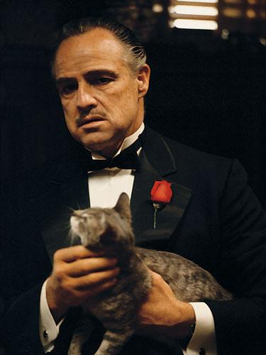 godfather_family_album_marlon_brando_with_cat (375x500, 31Kb)