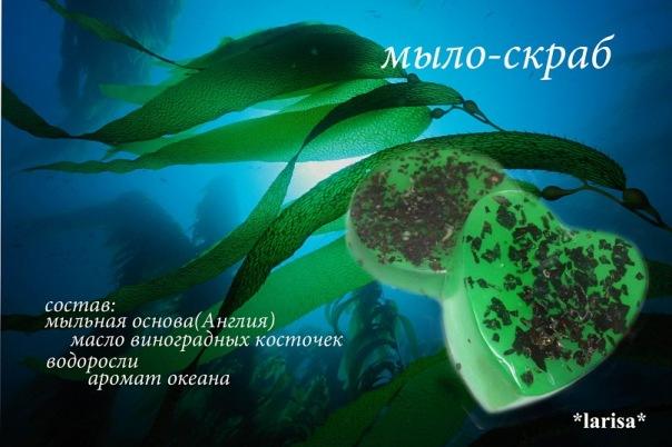 x_1dc98223 (604x402, 76Kb)
