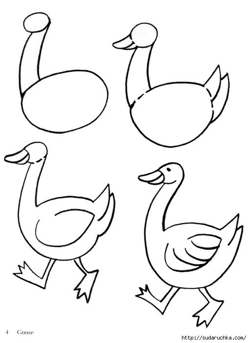 Уроки рисования для детей, поэтапный метод.  Как нарисовать собаку, овечку, оленя и других животных.