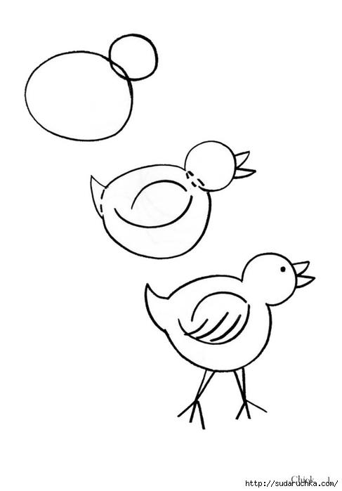 Птицы весной доклад птицы нашего края