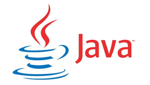 Язык Java хотят сделать региональным Фотографии