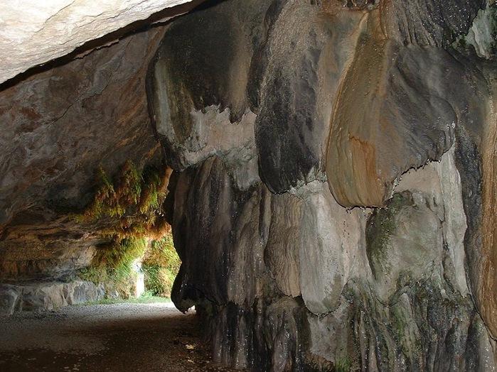 Природный парк Сан Мигель дель Фай. 98415