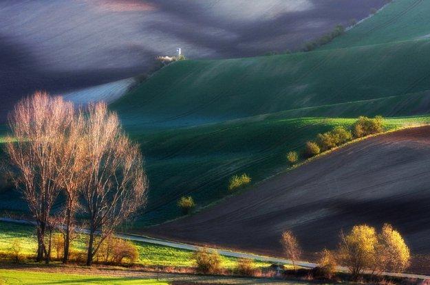 холмы Тосканы.jpg (625x415, 54Kb)