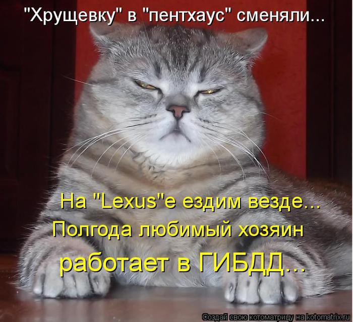 kotomatritsa_0Z (700x640, 75Kb)