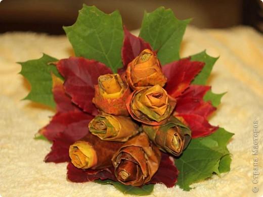 rose (12) (520x390, 48Kb)