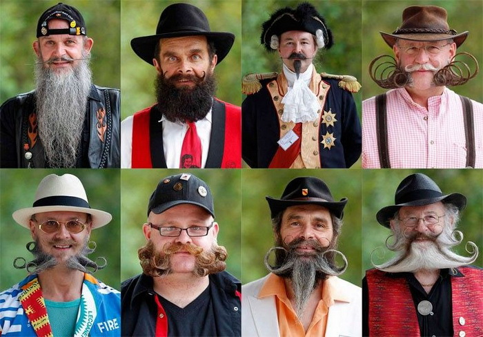 3925073_europeanbeard20121 (700x488, 156Kb)