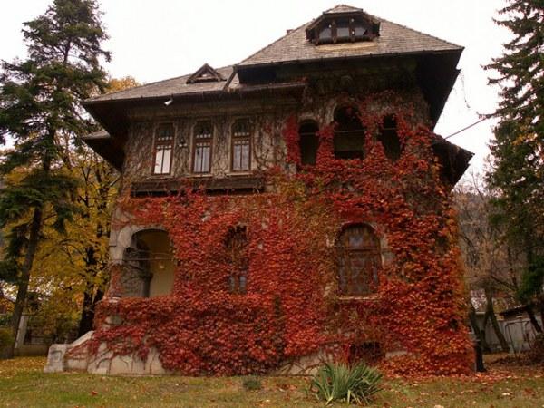 Дома, где живет осень5 (600x450, 98Kb)