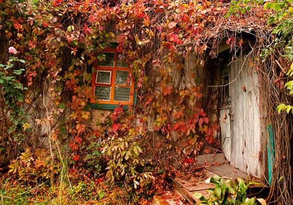 Дома, где живет осень11 (600x419, 138Kb)