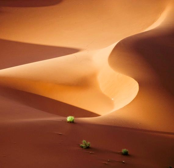 Завораживающие пейзажи дюн5 (570x549, 120Kb)