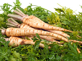 3862295_parsley_root_1 (280x210, 55Kb)