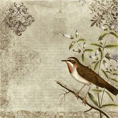 textures_bird_vintage_texture (400x400, 36Kb)