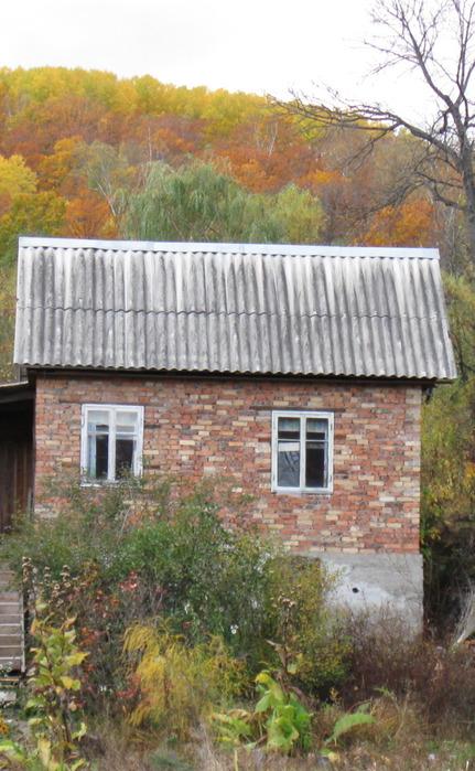 Дача. Осень/1349524505_ye (431x700, 126Kb)