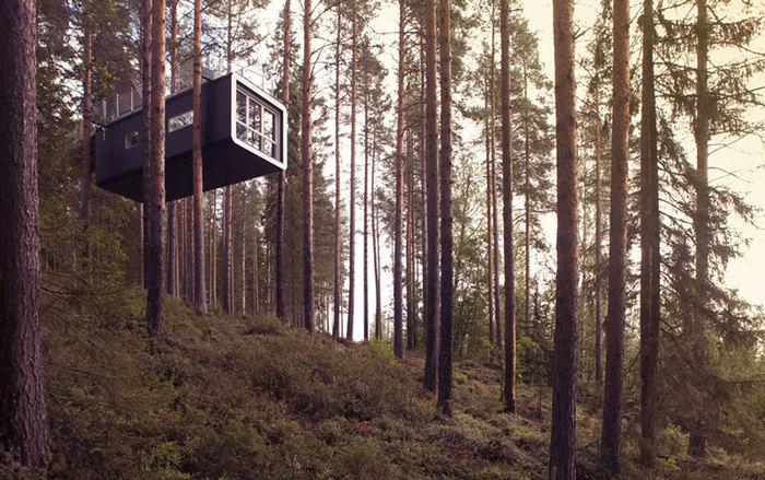 экологическая гостиница в лесу швейцария Treehotel  (700x439, 133Kb)