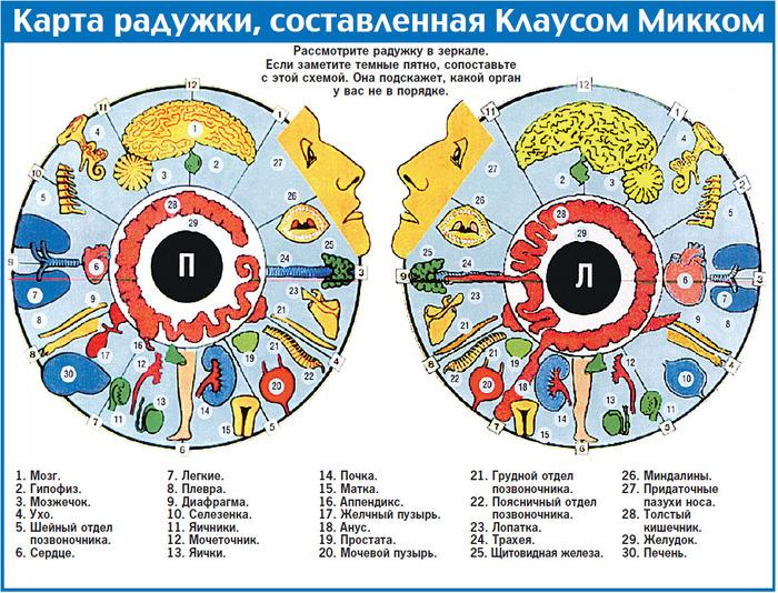диагностика по радужке глаза. (700x534, 255Kb)