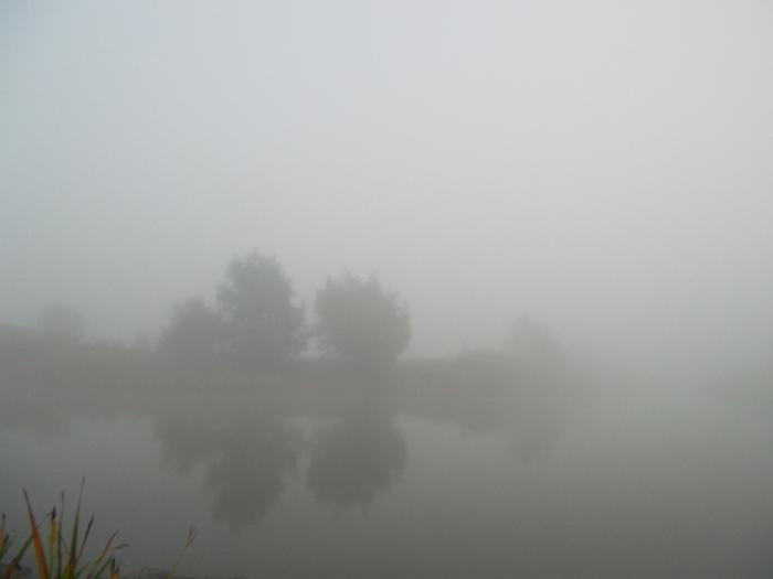 туман фото,молочный туман