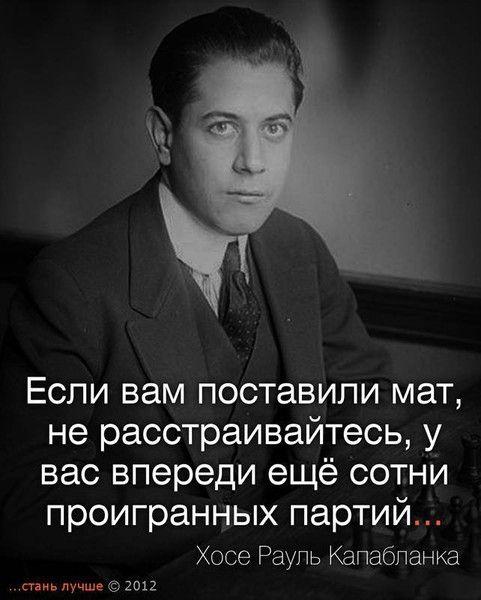citati_35 (481x600, 44Kb)