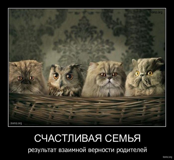 754483-2010.10.13-06.41.16-bomz.org-demotivator_schastlivaya_semya_rezultat_vzaimnoyi_vernosti_roditeleyi (700x644, 214Kb)