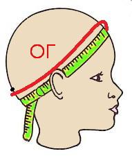 окружность головы (191x225, 28Kb)