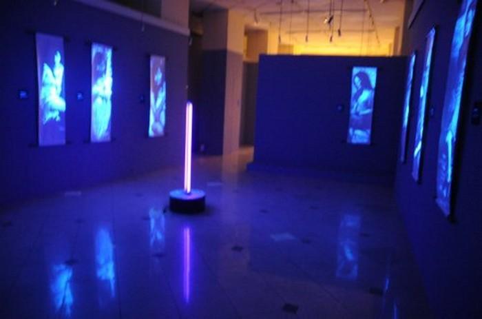 Невидимые картины Эдда Арагона 1 (700x463, 44Kb)