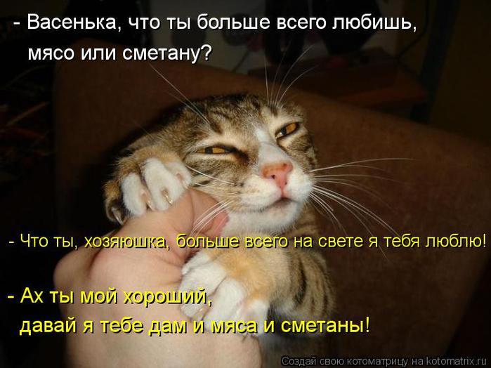 kotomatritsa_Ox (700x524, 52Kb)
