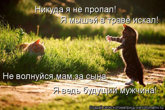 kotomatritsa_y (700x466, 75Kb)