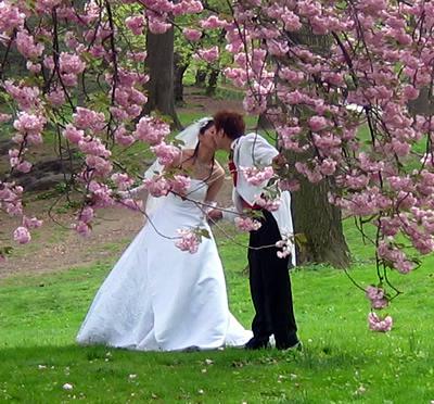 1868538_spring_wed_09 (400x372, 102Kb)