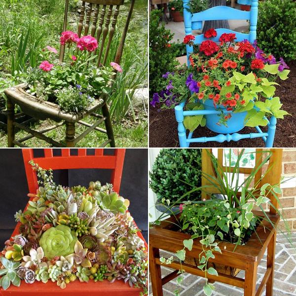 4497432_plantingflowersinchairs (600x600, 473Kb)