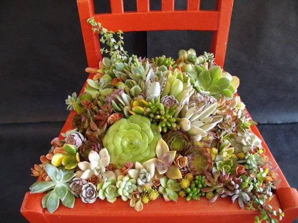 4497432_plantingflowersinchairs12 (600x450, 98Kb)