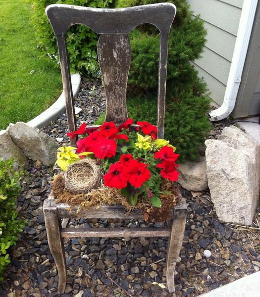 4497432_plantingflowersinchairs25 (525x600, 184Kb)