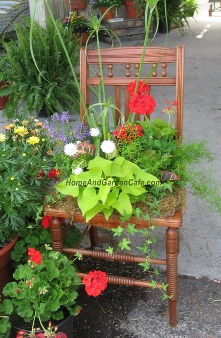 4497432_plantingflowersinchairs27 (450x690, 135Kb)