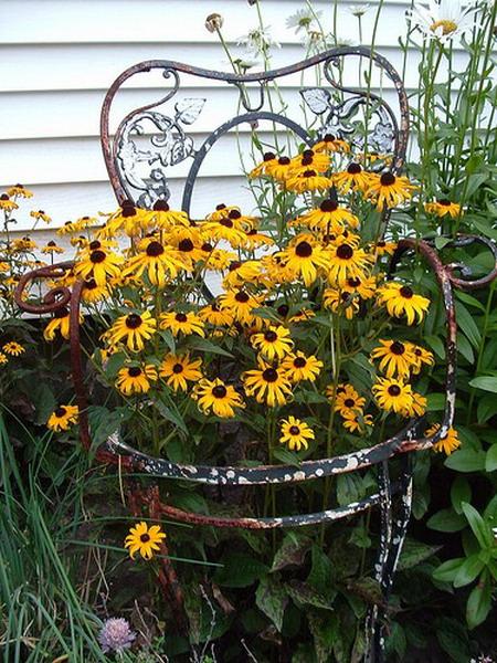 4497432_plantingflowersinchairs32 (450x600, 141Kb)