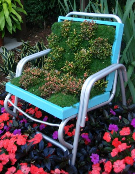 4497432_plantingflowersinchairs41 (465x600, 116Kb)