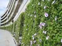 200x150-images-stories2-388-green_curtains-Arakawa_Ward_office_Tokyo_2010 (200x150, 12Kb)