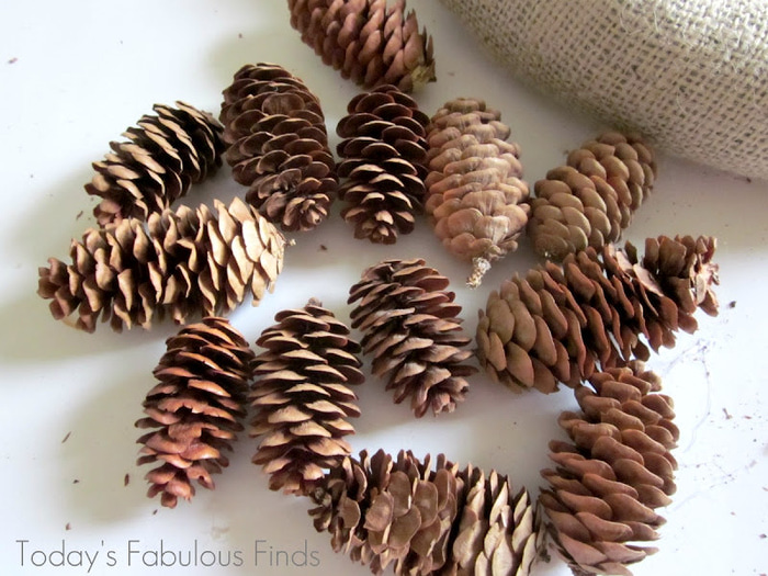 Pine Cone Wreath_5960 (700x525, 153Kb)