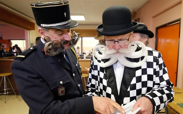 конкурс бородачей во франции 1 (700x437, 81Kb)