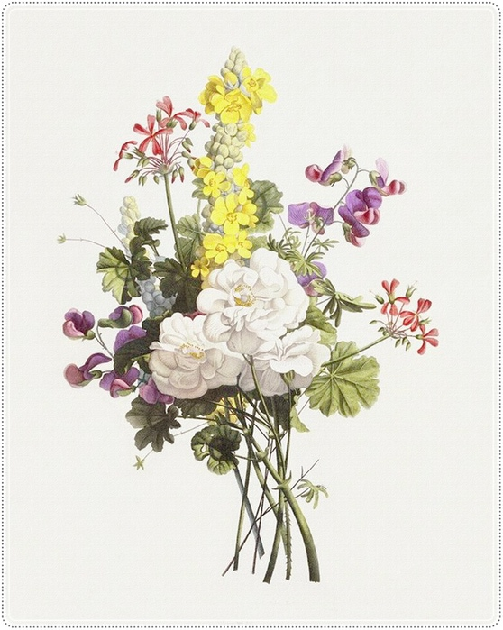 Цветы для цветочка картинки