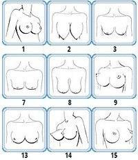 Форы женской груди фото фото 36-873
