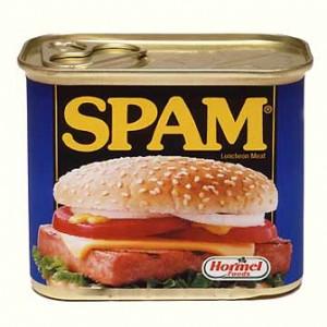 spam-300x300 (300x300, 26Kb)
