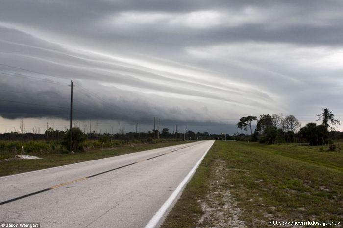 storm florida (6) (700x466, 117Kb)