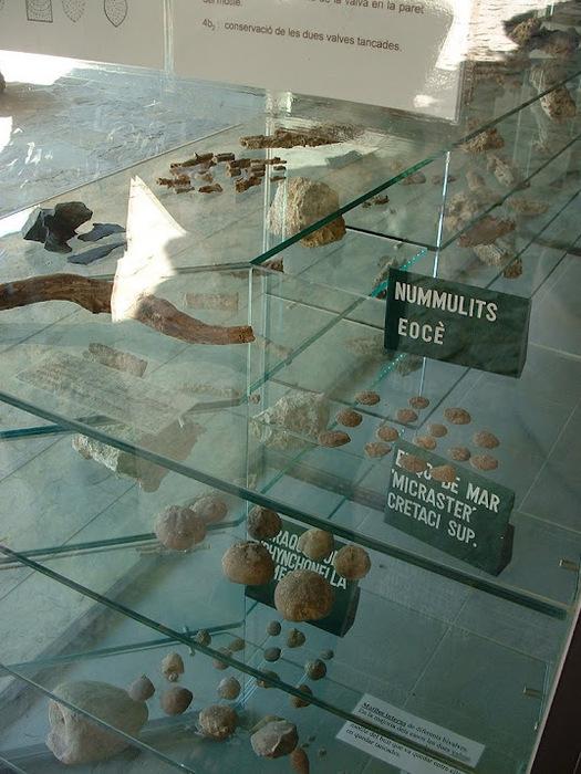 Природный парк Сан Мигель дель Фай. 57295
