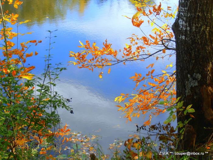 28 сентября 2012 пейзажи 035 (700x525, 629Kb)