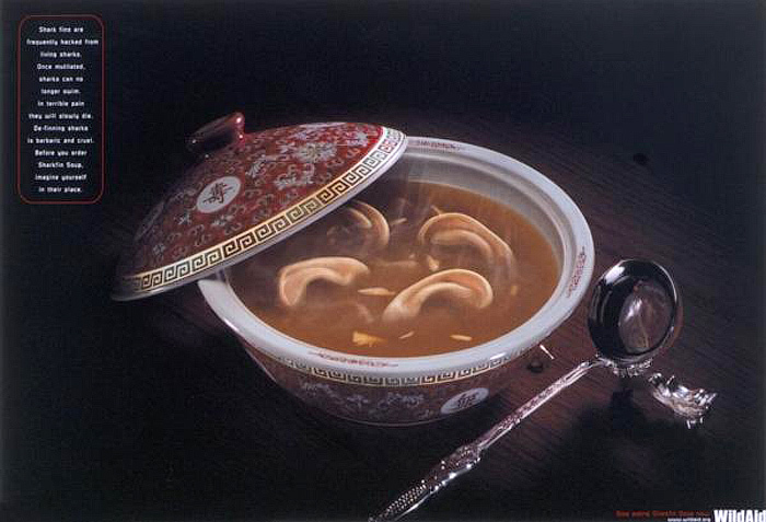 samaya-strashnaya-reklama-23 (700x477, 152Kb)